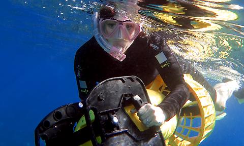 Maui Snorkel Private Tours
