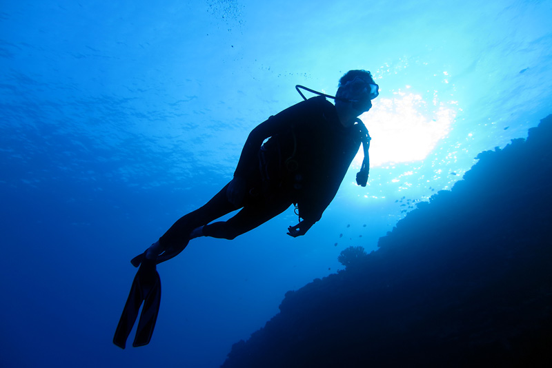 Private Maui Scuba Diving Tours