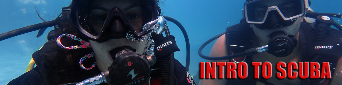 beginner-scuba-diving-maui-hawaii