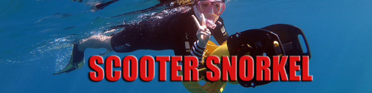 Maui scooter snorkel tour