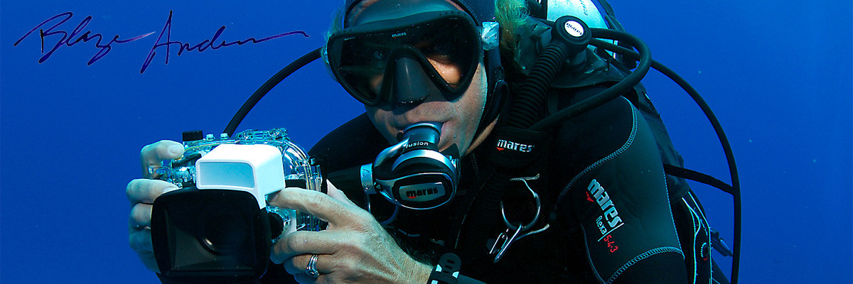 Maui scuba diving instructor and photographer