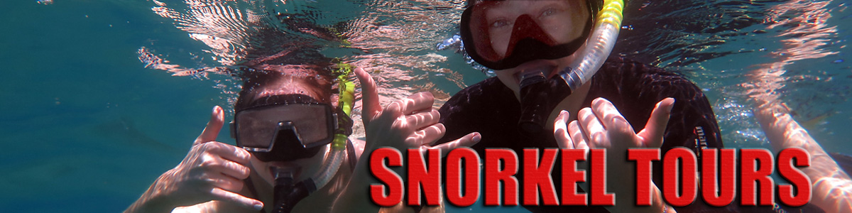 Maui Snorkel Tours and Lessons
